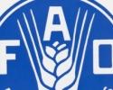 ОИРС и ФАО очакват спад на цените на аграрните суровини